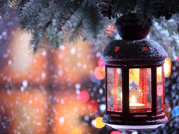 Novoroční poselství Anastasie Novych
